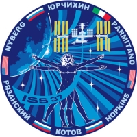 Expedition 37 Logo